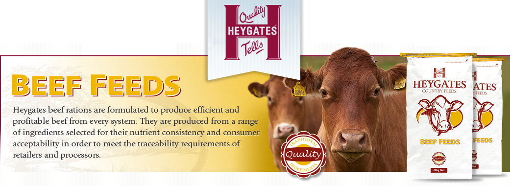 Heywoods Beef Feed Suppliers in Yorkshire