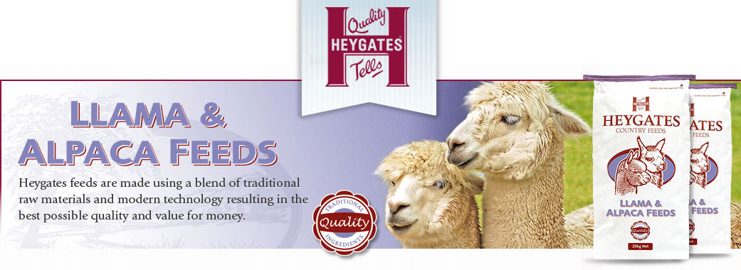 Heywoods Llama and Alpaca Feed Suppliers in Yorkshire