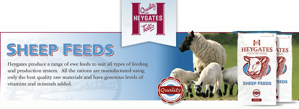 Heywoods Sheep Feed Suppliers in Yorkshire