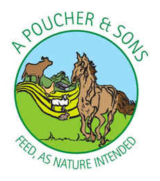a-poucher-sons-logo