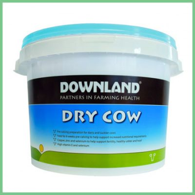Downland Dry Cow