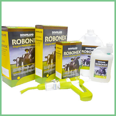 Downland Robonex