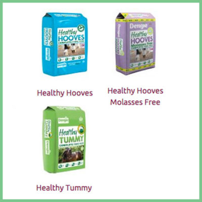 Dengie Healthy Range Horse Feeds